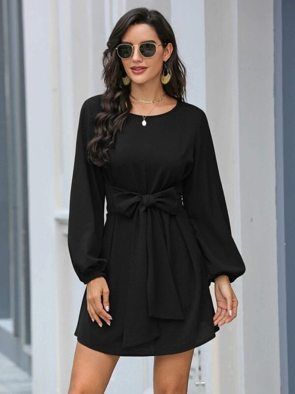 Black Lantern Sleeve Round Neck Casual Dress