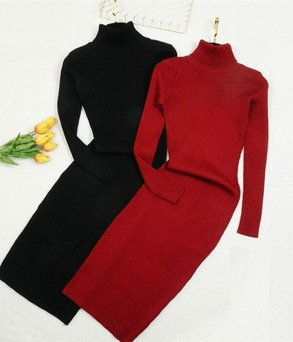 Turtleneck Long Sleeve Knitted Bodycon Dress