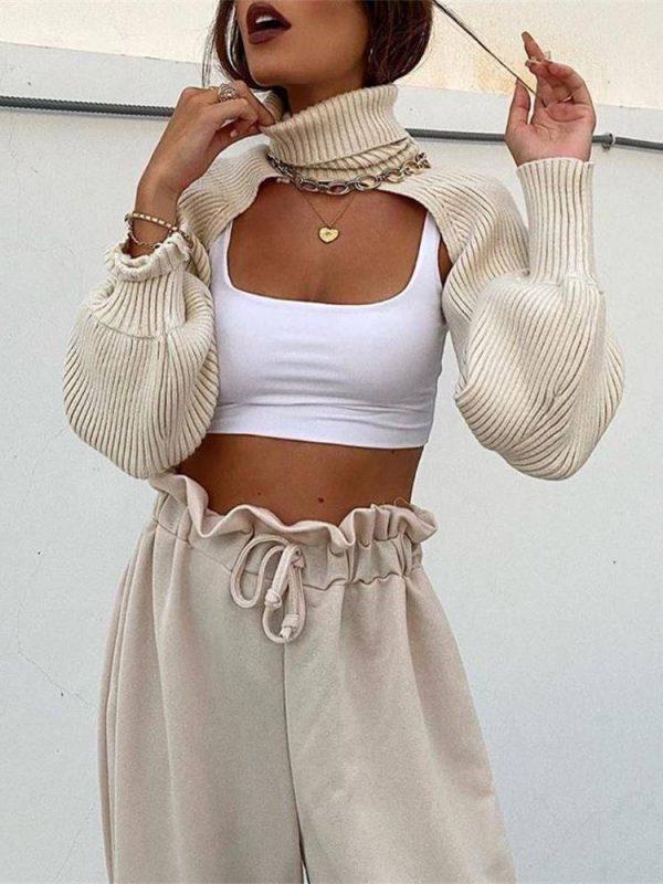 Chic turtleneck full sleeve short sweater